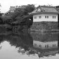 Photos: 隅櫓と天守閣 モノクローム