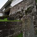 Photos: 常盤木門の石垣