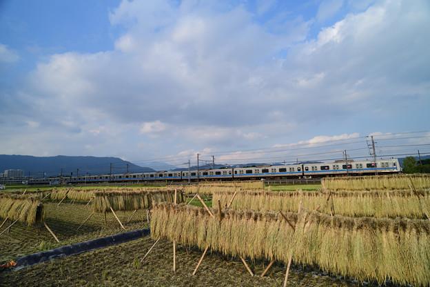 Photos: DSC_5989_00001