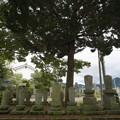Photos: 歴代住職の墓