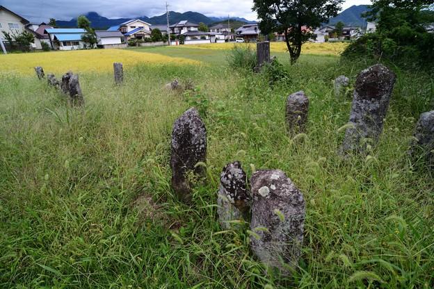 草生した墓石