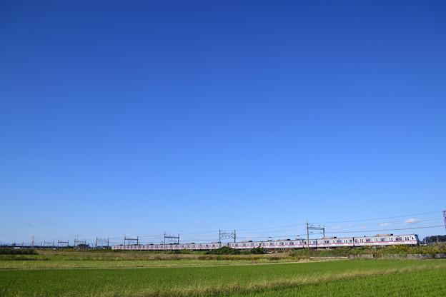 Photos: 青空と東京メトロ8000系電車