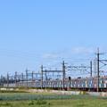 Photos: 東急8500系電車