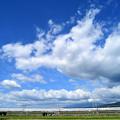 Photos: DSC_7864_00001_01