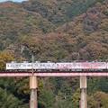 ラッピング電車
