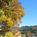 Photos: 秋たけなわ