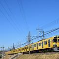 Photos: 2000系電車鮮やか