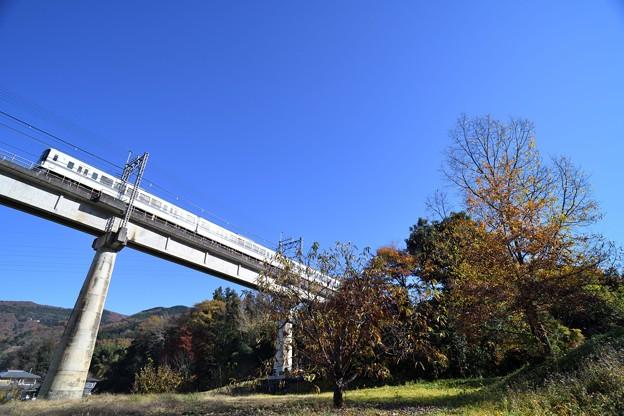 Photos: 秋を探しに
