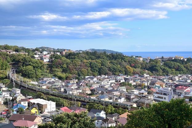 海が見える丘から