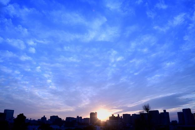 Photos: DSC_9777_00001