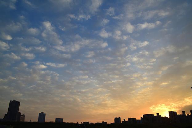 Photos: DSC_9783_00001