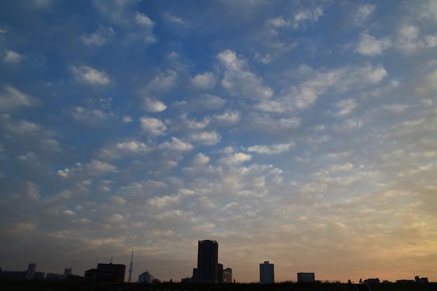 Photos: DSC_9784_00001