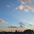 Photos: DSC_0430_00001