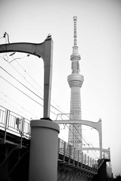 Photos: DSC_0736_00001