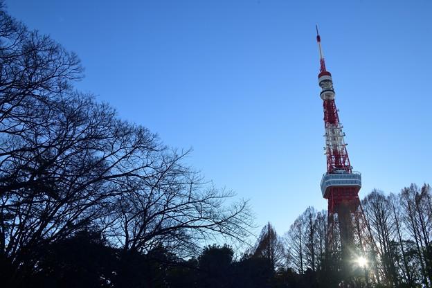 Photos: DSC_1164_00001