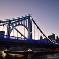 Photos: 清洲橋 ライトアップ