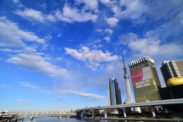 Photos: DSC_1533_00001