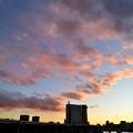 Photos: DSC_1645_00001