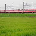 Photos: 1800型 臨時快速電車