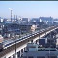 583-michinoku_003