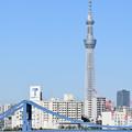 Photos: スカイツリーと清洲橋