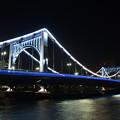 Photos: 清洲橋 夜景