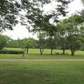 上座総合公園