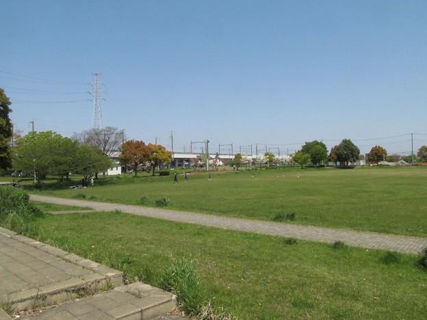 南栗橋近隣公園(豊田コミュニティプラザ)