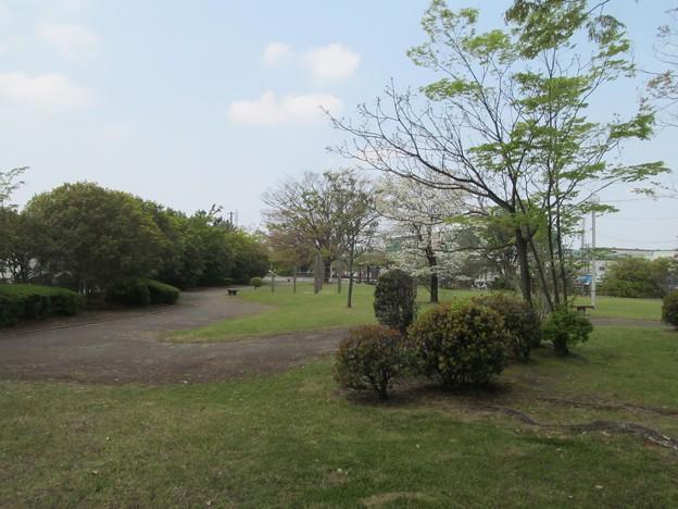 豊野町第一公園
