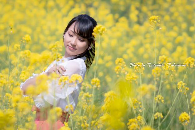 Photos: 「黄色のエチュード」