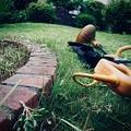写真: 草刈り