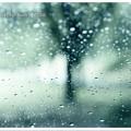Photos: Pioggia e Lacrima