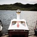 Photos: スワンボート