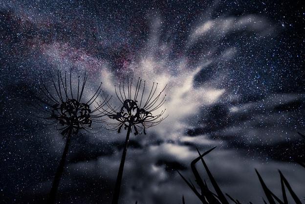 Photos: 宇宙へ