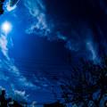 Photos: THE BLUE PLANET