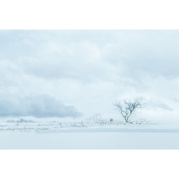 雪国の通学路