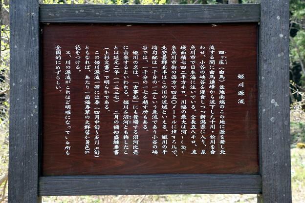 「姫川源流」説明