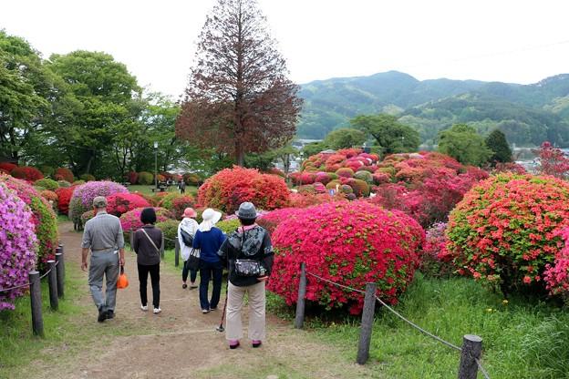 花の小道を散策する見物客