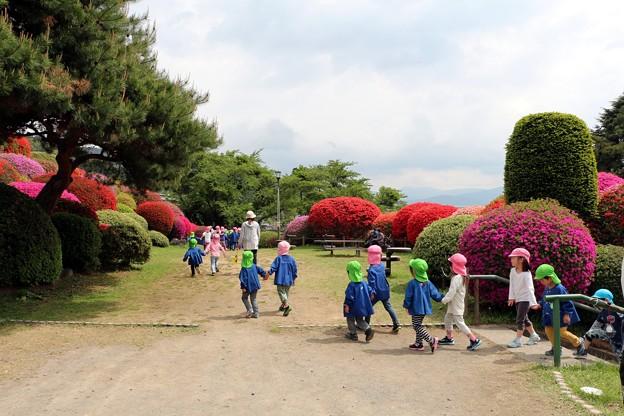 園児のお散歩つつじ見物