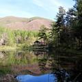 御池の水鏡