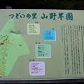 つどいの里八ヶ岳自然園