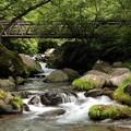写真: 川俣東沢渓谷
