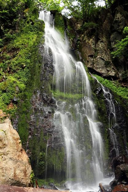 落差10m以上の滝を見あげる