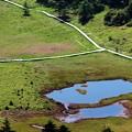 雲上の丘より湿原と鏡池を見下ろす
