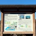 写真: 大原調整池(五葉湖)解説