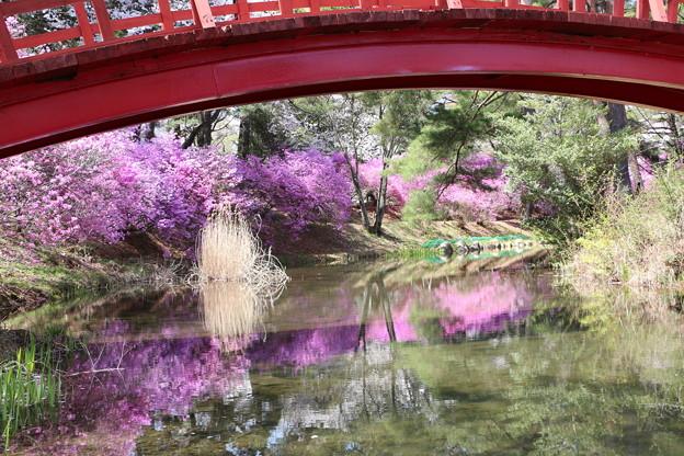 小島に架かる赤い太鼓橋
