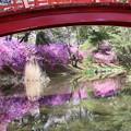 写真: 小島に架かる赤い太鼓橋