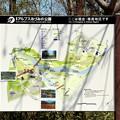 国営アルプスあづみの公園「堀金・穂高地区」園内マップ