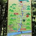 写真: 阿寺渓谷案内図