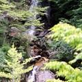 写真: 吉報の滝